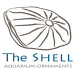 The Shell Deals