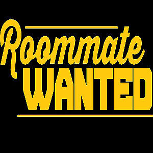 ROOMMATE WANTED: Young professional, clean and tidy