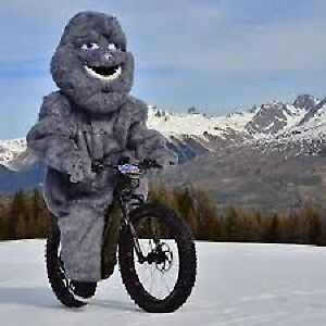 All I want for Xmas is--   a brand  New Fat Ebike