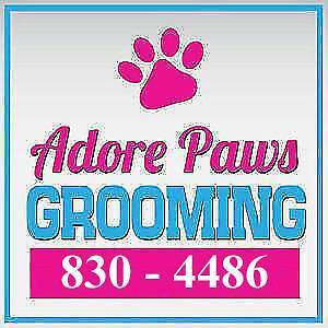 Space available!! Grooming table to rent Start up on your own!!