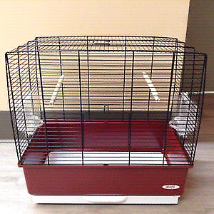 Living world cage for bird / cage  living world pour oiseau