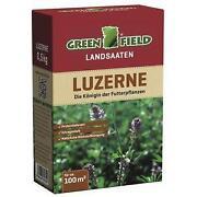 Saatgut Luzerne