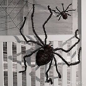 Unwanted Halloween Decorations Wanted!