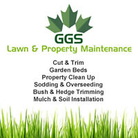 Grass Cutting & Trimming, Property Clean Up & More!