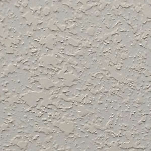 Looking for Experienced Contractor - Textured/Plastered Ceilings