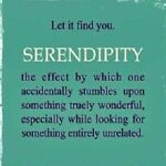 SimplySerendipity2