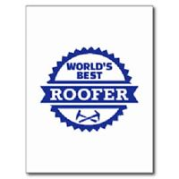 Roof Repair/Replacement Specialist - Great Rates!
