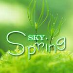 skyspring