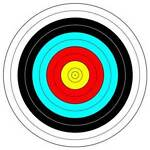 PRECISION TARGET SPORTS