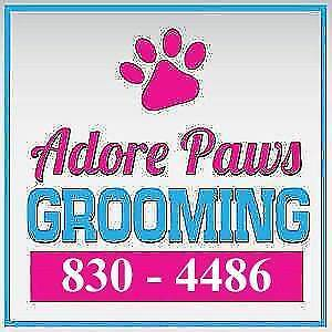 Adore Paws Grooming! Call anytime @ 830-4486 ;)