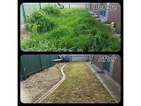 Garden maintenance -Local gardener-Leaf Clearing-blowing and removal -Gardening services