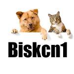 biskcn1