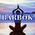 barbokoutdoor6
