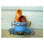 Holliez Hobbiez