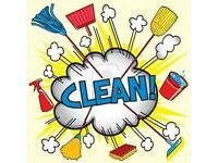 Cleaner Cleaning