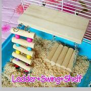 Parrot Ladder