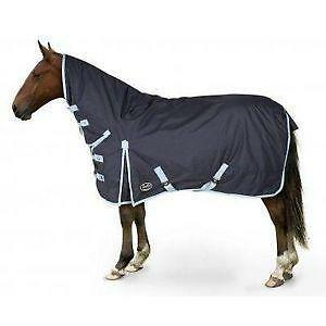 Horse Rugs 6 0