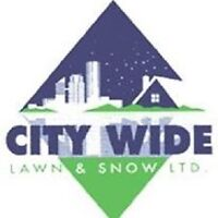 SNOW REMOVAL SERVICES   COMMERCIAL AND RESIDENTIAL