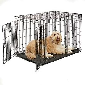 Kong XL dog crate