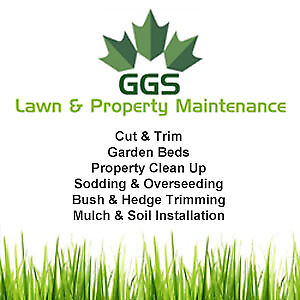 Grass Cutting & Lawn Care Services
