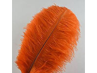 34 18-25 inch Orange Large Ostrich Feather Plumes - IMMACULATE CONDITION