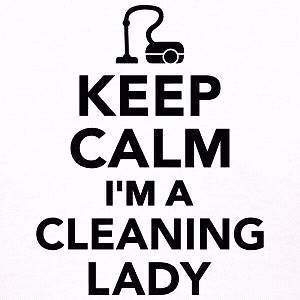 Cleaning lady Kitchener / Waterloo Kitchener Area image 1