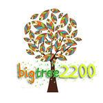 bighero2019
