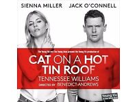 2x tickets for Cat On a Hot Tin Roof, final Friday night production, £80/pair