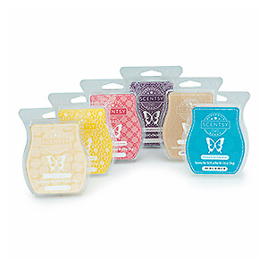 Searching for Scentsy Bars