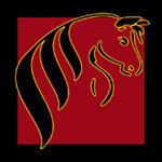 BobbiGees Custom Horse Accessories
