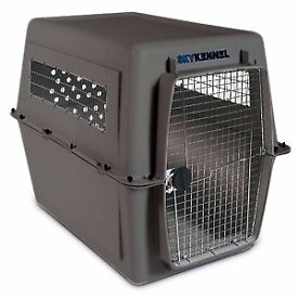 Airline Travel crate for large dog