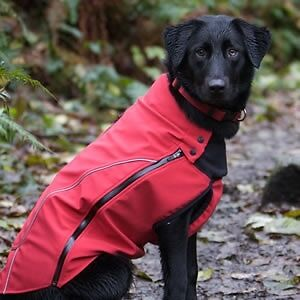 Canine Equipment soft shell dog jacket - Medium Size black