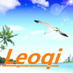 LEQI FISHING PRODUCT