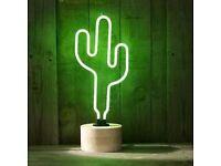 Green Cactus Neon Table Lamp From Debenhams