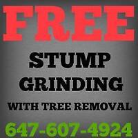 FREE STUMP GRINDING WITH SMALL TREE REMOVAL.