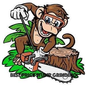 Best Price Stump Grinding - from $60