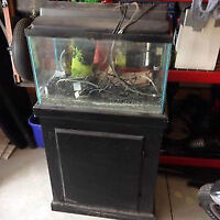 Fish Tank with Hand Crafted Stand