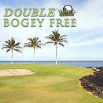 DoubleBogeyFree