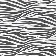 Zebra Print Cotton Fabric