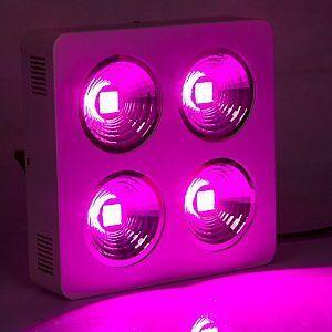 Full spectrum 768W COB LED Grow Light hydroponic