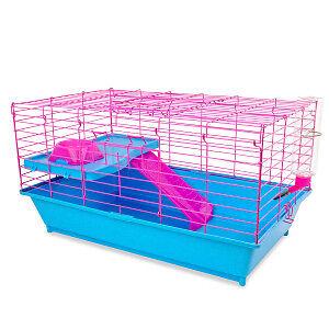 Ginea Pig Starter Kit
