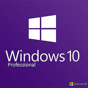 windows 10 professionnelle / windows 10 pro