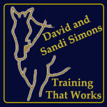 David and Sandi Simons
