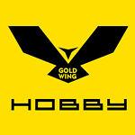 Goldwinghobby
