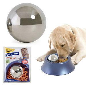Ralentissez votre chien lorsqu'il mange nourriture Portion Pace