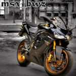 msx_bwz
