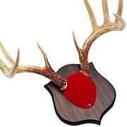 Deer Mount Kit