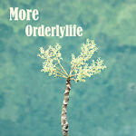 more_orderlylife