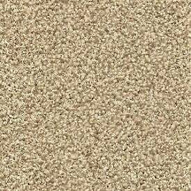 Beige carpet ideal for small room or stairs etc New