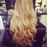 HAIR EXTENSION TRAINING COURSE! ST. CATHARINES, ON - 4/8/17